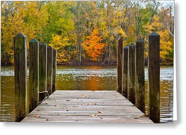 Joeseph Greeting Cards - Fall on the Dock Greeting Card by Amy Lingle