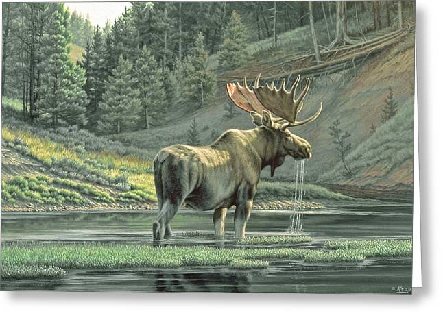Yellowstone Greeting Cards - Fall on the Yellowstone Greeting Card by Paul Krapf