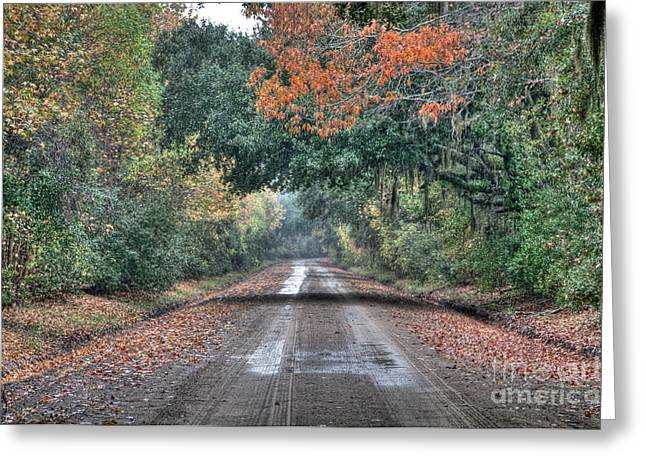 Fall On Witsell Rd. Greeting Card by Scott Hansen