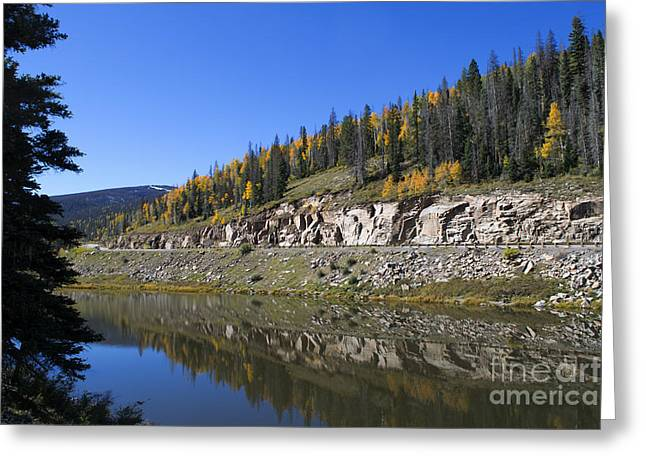 Wolf Creek Photographs Greeting Cards - Fall on Wolf Creek Pass Greeting Card by Jerry McElroy