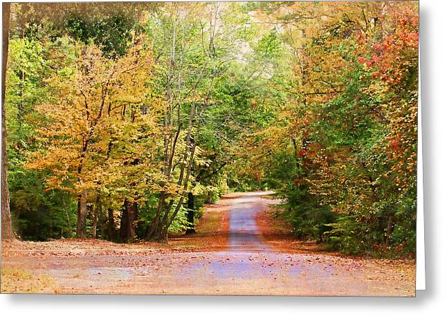 Willow Lake Greeting Cards - Fall Pathway Greeting Card by Judy Vincent
