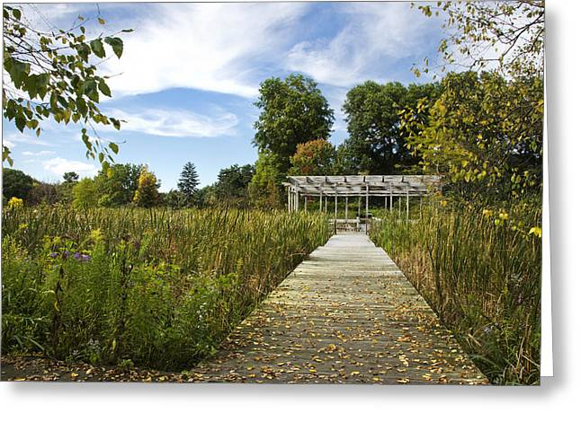 Finger Lakes Greeting Cards - Fall Pergola Greeting Card by Christina Rollo