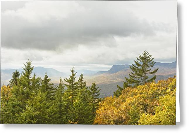 New England Wilderness Greeting Cards - Fall Rainstorms in Mount Blue State Park Weld Maine Greeting Card by Keith Webber Jr