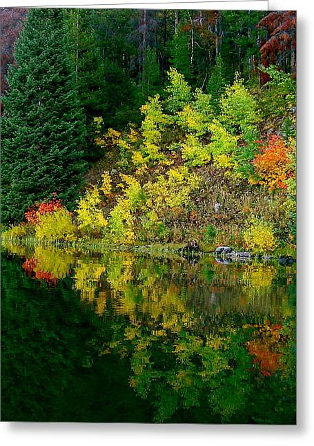 Colorado Pyrography Greeting Cards - Fall Refections Greeting Card by Darlene Grubbs