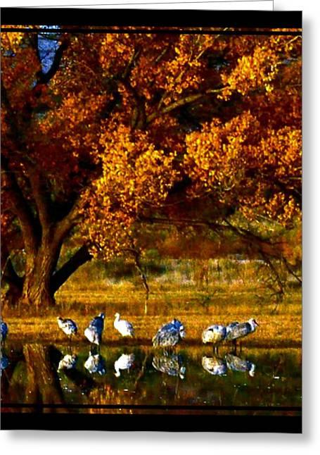 Fall Grass Greeting Cards - Fall Reflection Greeting Card by Dawn  Van Doorn