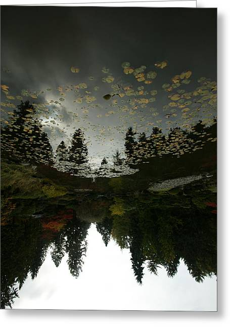 Pacific Northwest Digital Art Greeting Cards - Fall Reflection Greeting Card by Jeff Burgess