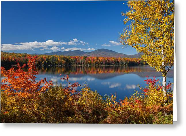 Park Scene Greeting Cards - Fall Reflections at Jericho Lake Greeting Card by Christopher Whiton