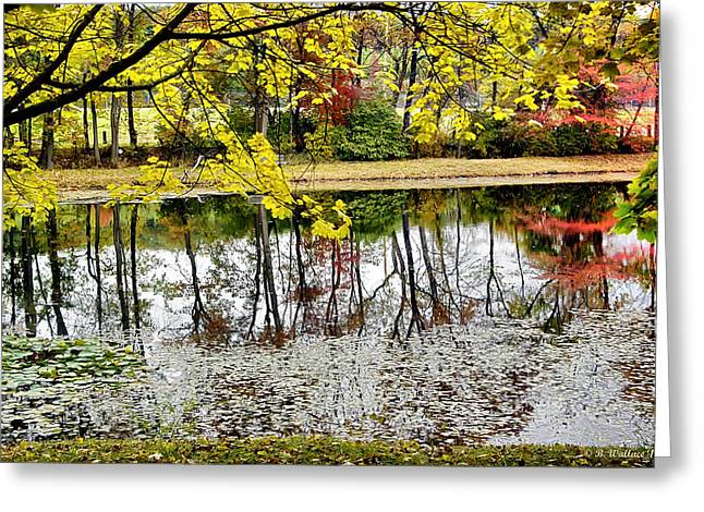 Fall Reflections Greeting Card by Brian Wallace