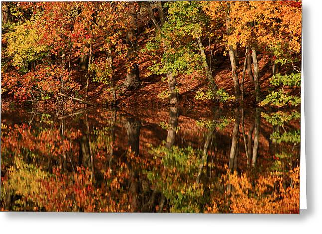 Colors Of Fall Greeting Cards - Fall Reflections Greeting Card by Karol  Livote