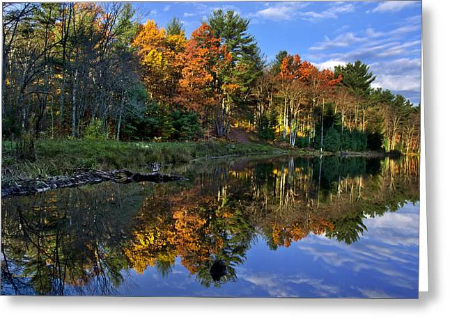 Fall Colors Greeting Cards - Fall Reflections Landscape Greeting Card by Christina Rollo