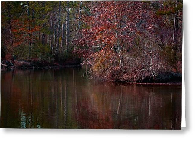 Trees Reflecting In Water Greeting Cards - Fall Reflections Greeting Card by Linda Unger