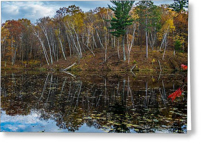 Woodland Scenes Greeting Cards - Fall Reflections Greeting Card by Paul Freidlund
