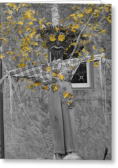 Gatlinburg Tennessee Greeting Cards - Fall Scarecrow Greeting Card by Dan Sproul