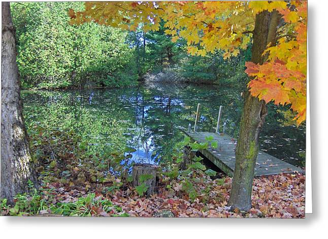 Fallen Leaf On Water Greeting Cards - Fall Scene by Pond Greeting Card by Brenda Brown
