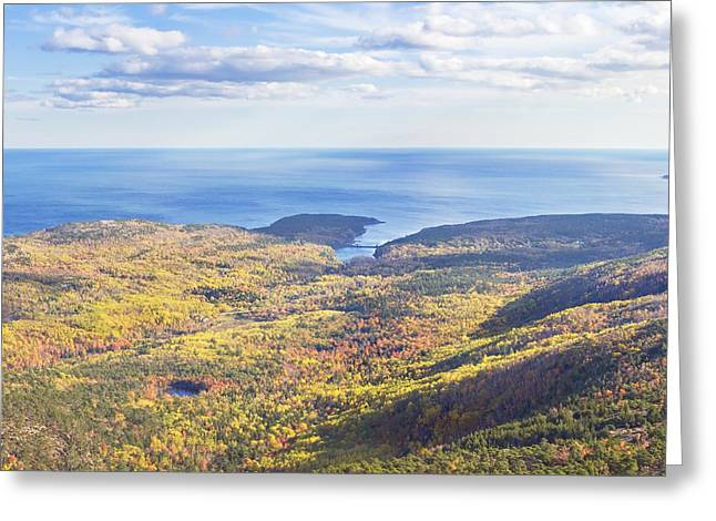 New England Wilderness Greeting Cards - Fall Seascape Otter Point Acadia National Park Greeting Card by Keith Webber Jr