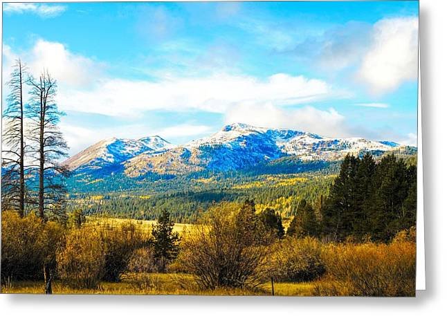 Fall Season In The Sierras Greeting Card by Don Bendickson