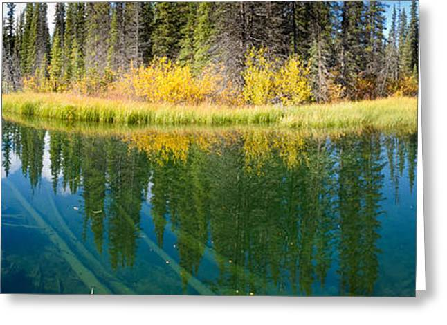 Biotope Greeting Cards - Fall sky mirrored on calm clear taiga wetland pond Greeting Card by Stephan Pietzko
