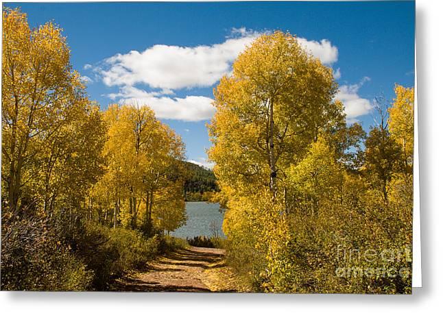 Geobob Greeting Cards - Fall Splendor at Kolob Reservoir Markagunt Plateau Utah Greeting Card by Robert Ford