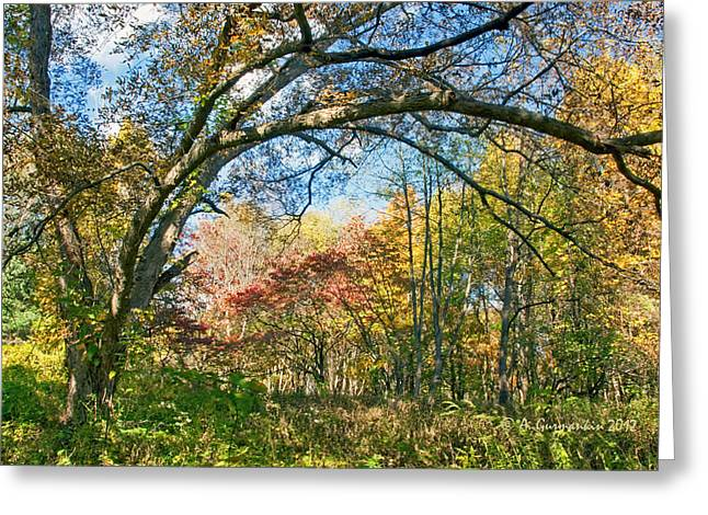 Greeting Card featuring the photograph Fall Tapestry Of Colors And Textures by A Gurmankin