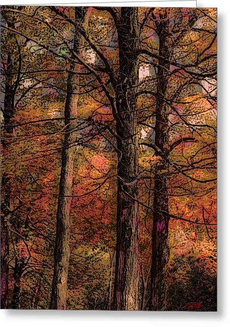 Fall Photos Paintings Greeting Cards - Together Greeting Card by Michael James Greene