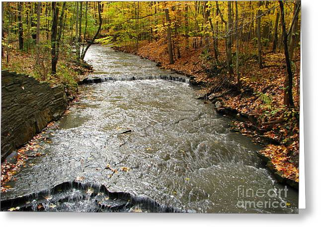 Ohio Greeting Cards - Fall Waters Greeting Card by Michael Krek