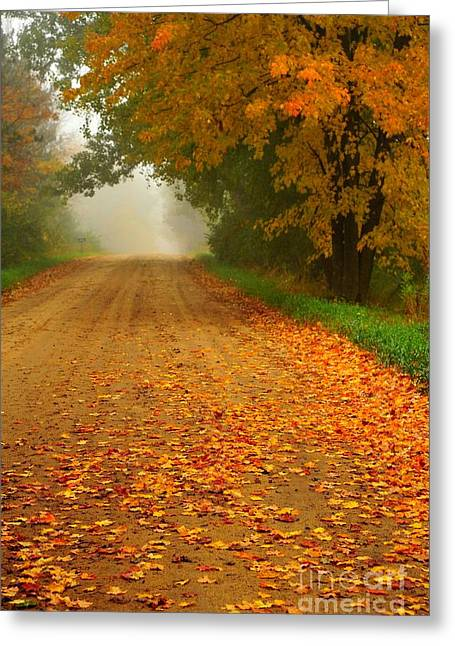 Fall Colors Greeting Cards - Fallen Beauties 2 Greeting Card by Terri Gostola