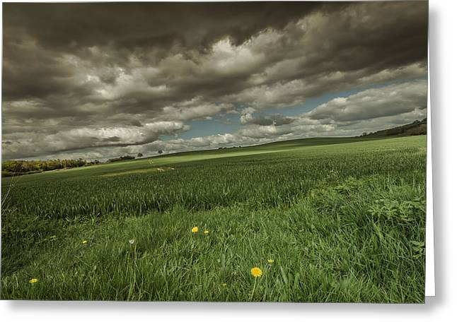 Warwickshire Greeting Cards - Fallen Greeting Card by Chris Fletcher