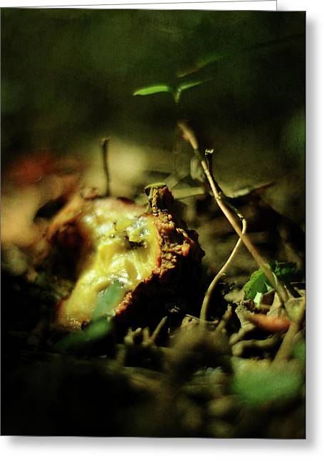 Forest Floor Greeting Cards - Fallen Fruit Greeting Card by Rebecca Sherman
