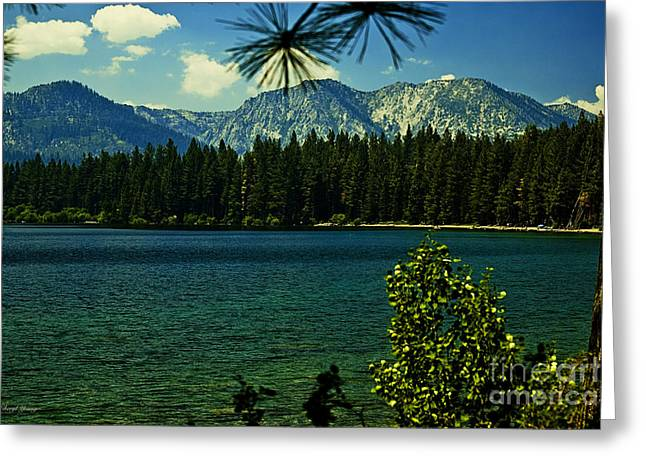 Fallen Leaf Greeting Cards - Fallen Leaf Lake Greeting Card by Cheryl Young
