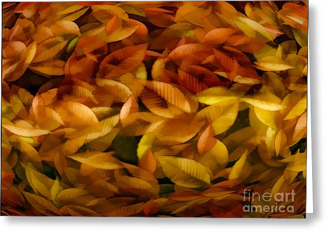 Photos Of Autumn Greeting Cards - Fallen Leaves Greeting Card by Tom York Images