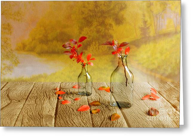 Fallen Leaves Greeting Card by Veikko Suikkanen