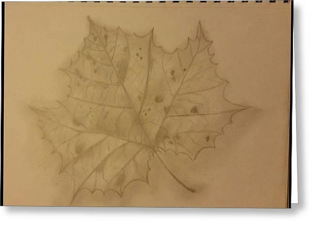 Fallen Leaf Drawings Greeting Cards - Fallen One Greeting Card by Lauren Hinkle