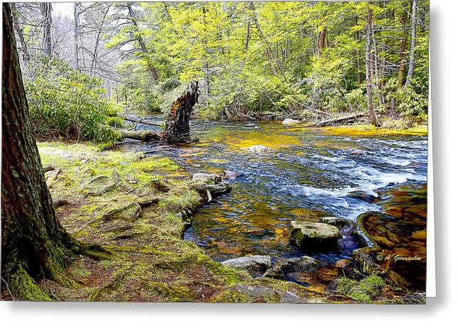 Mud Season Greeting Cards - Fallen Tree in Stream Pocono Mountains Greeting Card by A Gurmankin