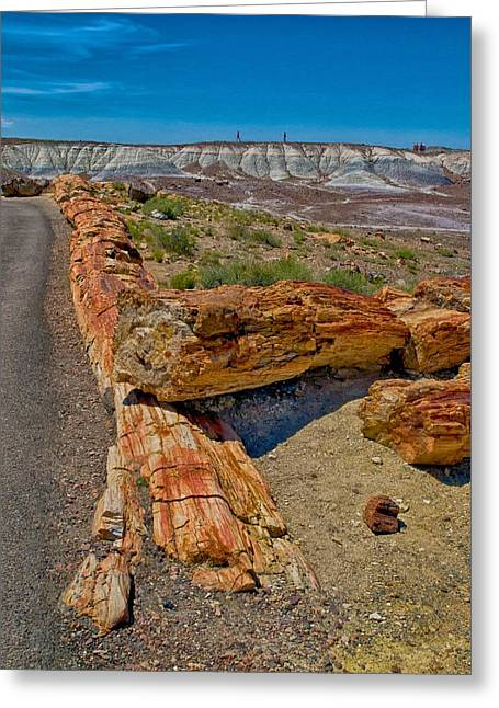 Petrified Forest Greeting Cards - Fallen Trees of Stone Greeting Card by Rob Wilson