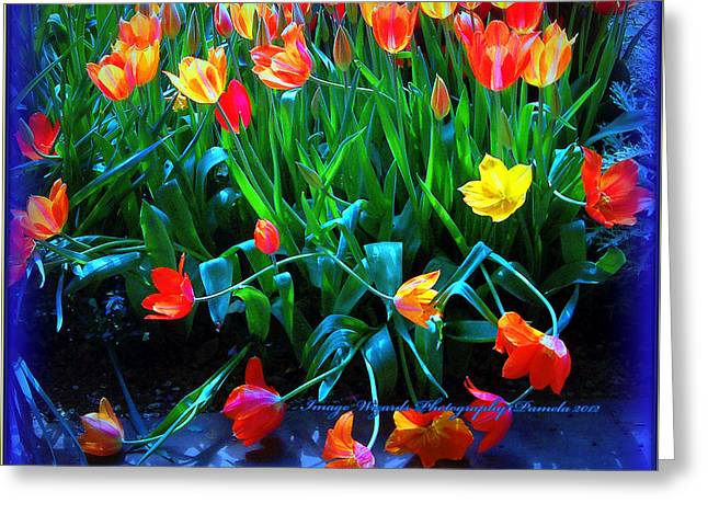 Flower Design Greeting Cards - Fallen Tulips Greeting Card by ARTography by Pamela  Smale Williams