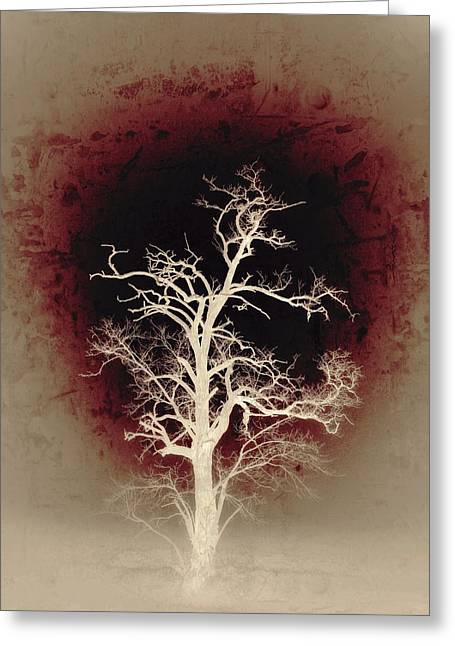 Falling Deeper... Greeting Card by Marianna Mills
