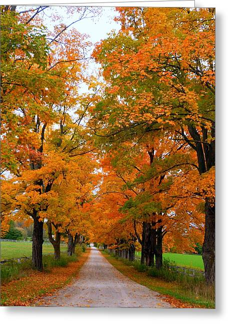 Autumn In The Country Greeting Cards - Falling For Country Farm Greeting Card by Lingfai Leung