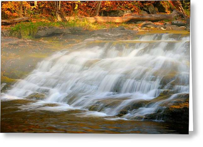 Kent Falls Greeting Cards - Falling For You Greeting Card by Diana Angstadt