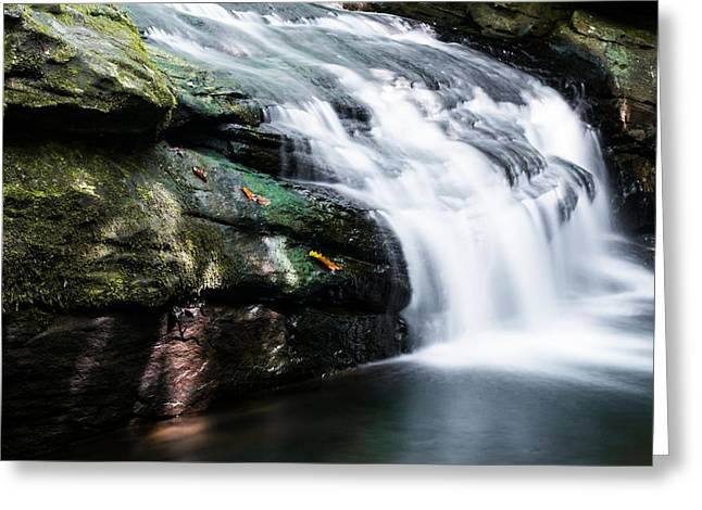 Music Time Photographs Greeting Cards - Falling From the Rocks Greeting Card by Shelby  Young