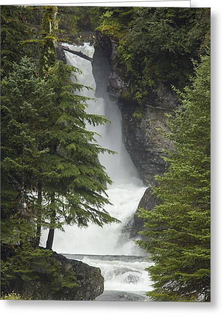 Southeast Alaska Greeting Cards - Falling Through Beauty Greeting Card by Tim Grams