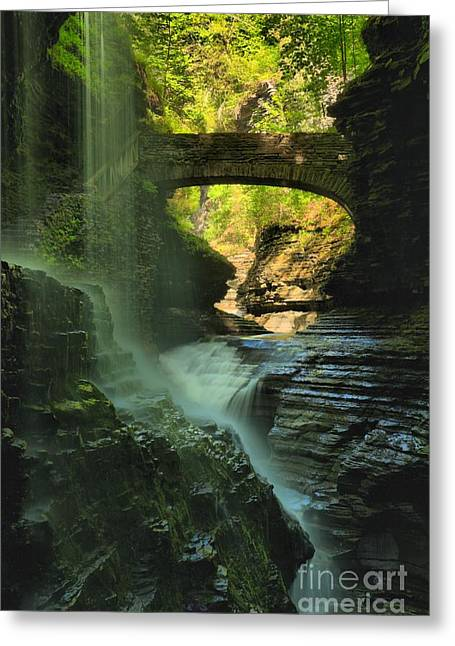 Finger Lakes Greeting Cards - Falling Through The Watkins Glen Canopy Greeting Card by Adam Jewell