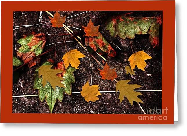 Fall Photos Digital Art Greeting Cards - Falll Is Too Close Greeting Card by Marsha Heiken