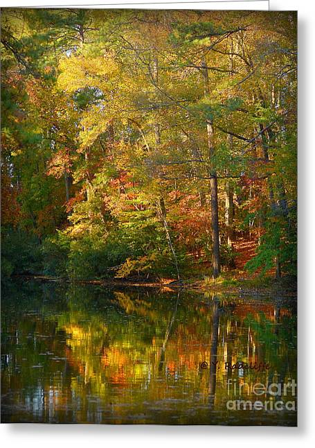 Fallscape Greeting Cards - FallPainting Greeting Card by Yvette Radcliffe