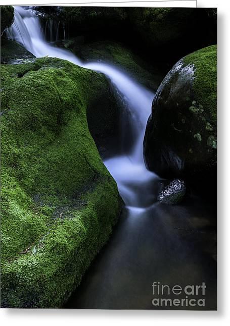 Falls Brook - The Luminous Basin  Greeting Card by Thomas Schoeller