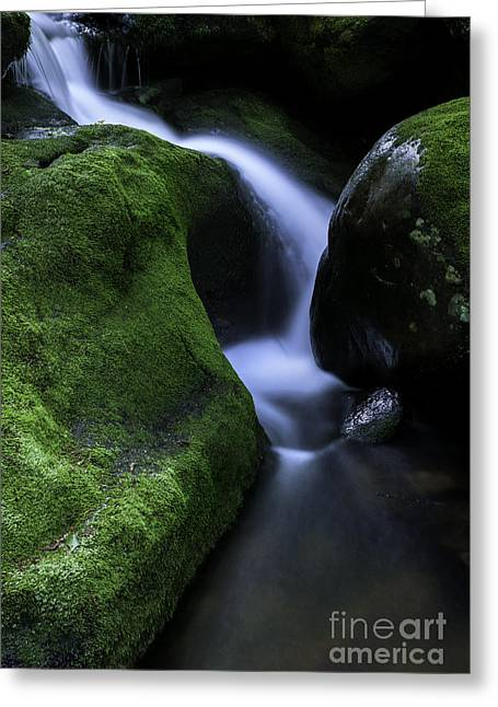 Berkshires Of New England Greeting Cards - Falls Brook - The Luminous Basin  Greeting Card by Thomas Schoeller