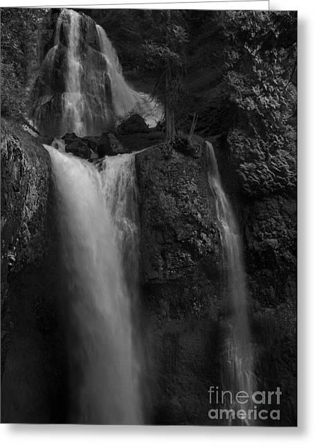 Lichen Image Greeting Cards - Falls Creek Falls Greeting Card by Keith Kapple