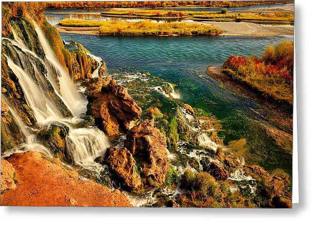Fall Creek Greeting Cards - Falls Creek Waterfall Greeting Card by Greg Norrell