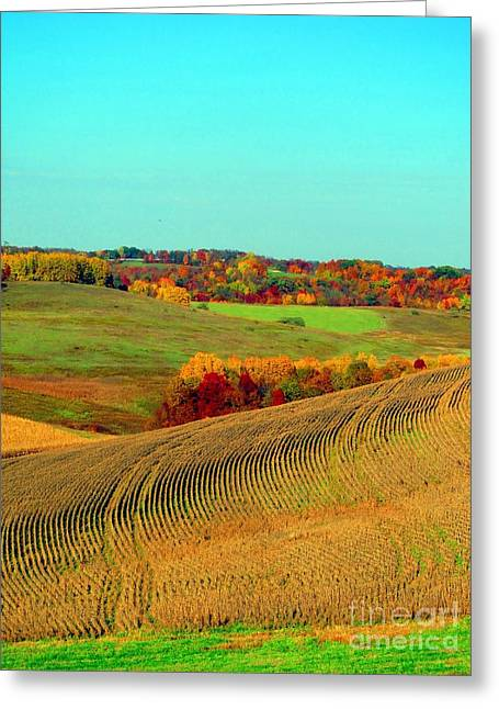Quaker Greeting Cards - Falls Farmland in Ohio Greeting Card by Matthew Peek