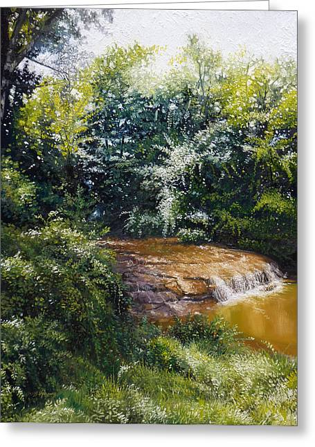Falls Greeting Card by Gregg Hinlicky