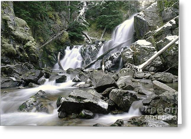 Geologic Formations Greeting Cards - Falls In Forest  Greeting Card by Jeff  Swan